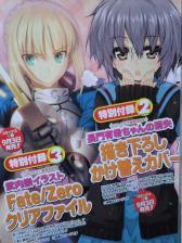 ヤングエース 2011年 09月号 Fate (6)
