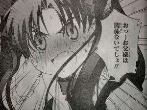 ヤングエース 2011年 12月号 Fate関連 (3)