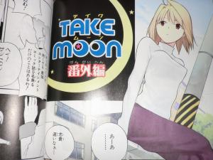 TAKEMOON 武梨えり TYPE-MOON作品集 特別版 (4)