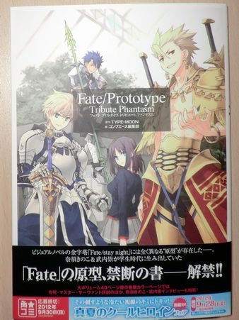 Fate Prototype Tribute Phantasm (1)