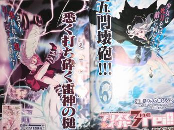 コンプエース 2013年 1月号 Fate関連 (4)