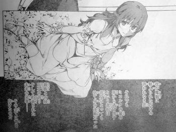 ヤングエース 2013年 1月号 Fate関連 (8)