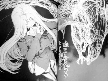 Fate/Zero 5巻 (9)