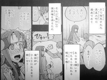 フェイト/エクストラCCC TRIAL 前編 (1)