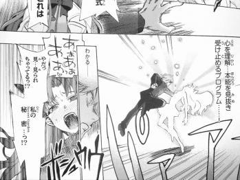 フェイト/エクストラCCC TRIAL 後編 (6)