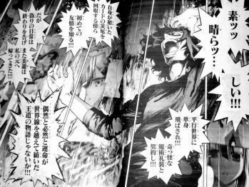 Fate/kaleid liner プリズマ☆イリヤ ドライ!! 第11話 感想 (3)