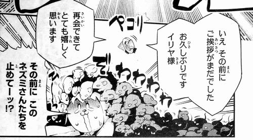 Fate/kaleid liner プリズマ☆イリヤ ドライ!! 第15話 感想 (7)