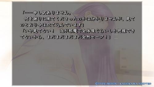 Vita版『Fate/hollow ataraxia』購入  (26)