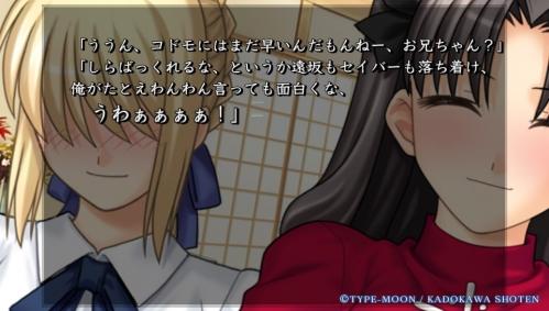 Vita版『Fate/hollow ataraxia』購入  (27)