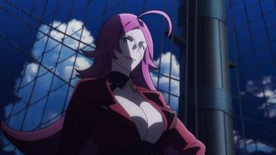 Fate/Grand Order TV-CM 第3弾 (19)