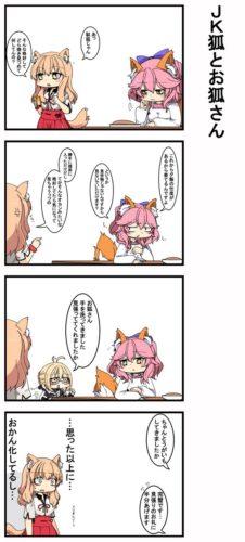 【FGO】おかんキャス狐とえっちゃんと通りすがりのJKセイバー